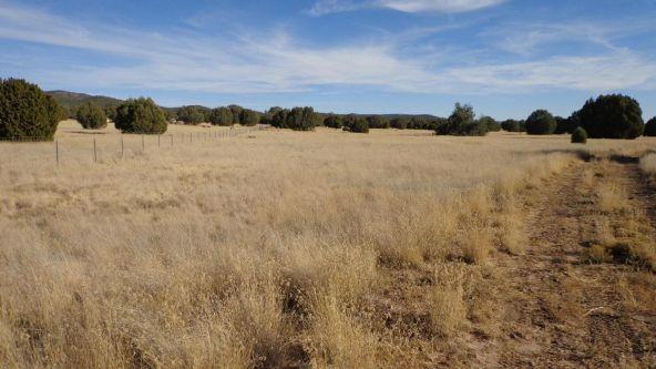 44201 N. Crazy Coyote Way, Seligman, AZ 86337 Photo 39