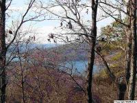 Home for sale: Upper Manchester Rd., Guntersville, AL 35976