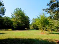 Home for sale: Homer Gore Rd., Ethelsville, AL 35461