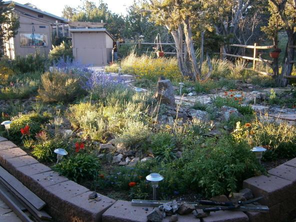 10922 S. High Mesa Trail, Williams, AZ 86046 Photo 33