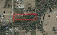 Home for sale: 250 N. Riverdale Rd., Avon Park, FL 33825