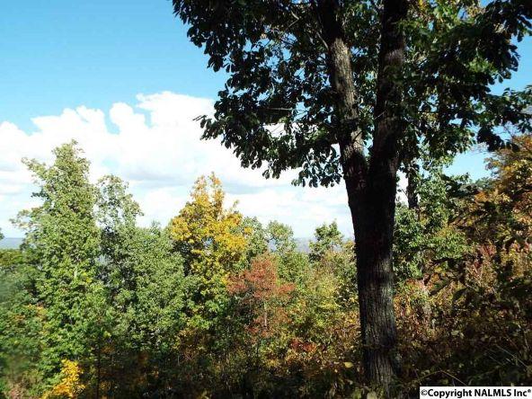 16 S. County Rd. 89, Mentone, AL 35984 Photo 2