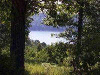 Home for sale: Lot 4 Lake Point Dr., Clarkridge, AR 72623