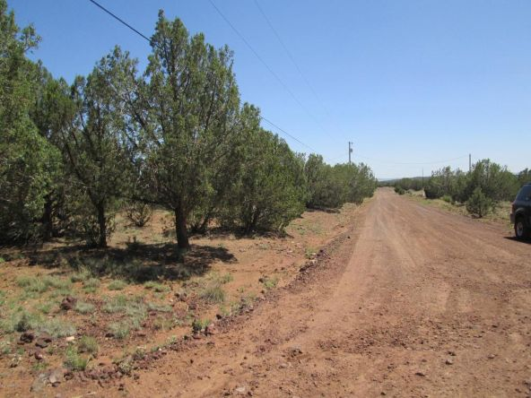 3328 N. Hillside Rd., Ash Fork, AZ 86320 Photo 66