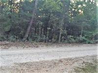 Home for sale: Lot 4 Forrest Dr., Diamond City, AR 72630