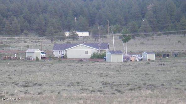 3460 E. Mountain Man Trail, Williams, AZ 86046 Photo 13