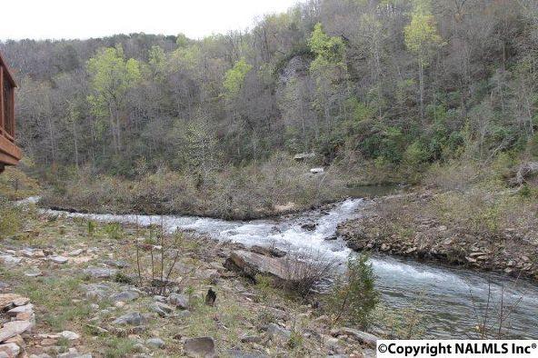 1020 County Rd. 628, Mentone, AL 35984 Photo 27