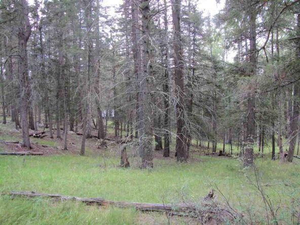 119 W. Pecos Canyon Estates Rd., Tererro, NM 87573 Photo 24