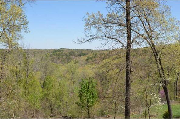 13819 187 Hwy. Blue Meadow, Eureka Springs, AR 72631 Photo 26