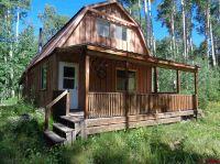Home for sale: 1322 Hampton, Cimarron, CO 81220