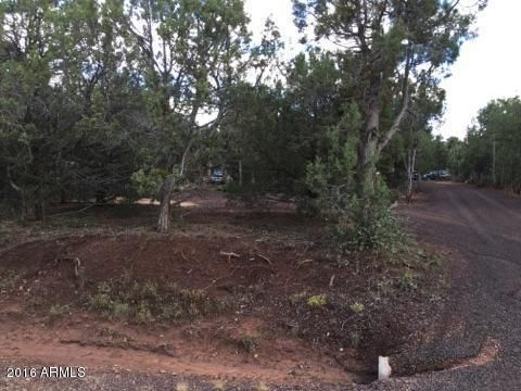 6687 Bandido Way, Show Low, AZ 85901 Photo 62