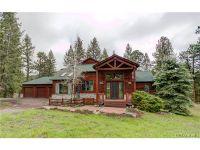 Home for sale: 1572 Sugarbush Dr., Evergreen, CO 80439