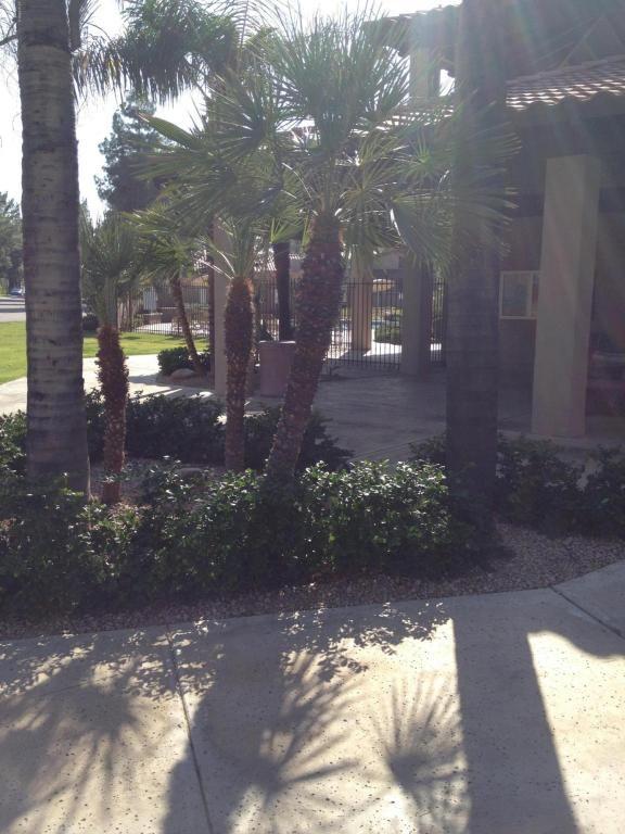4115 E. Altadena Avenue, Phoenix, AZ 85028 Photo 88