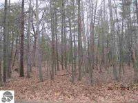 Home for sale: 0 Pine Ridge Ct., Standish, MI 48658