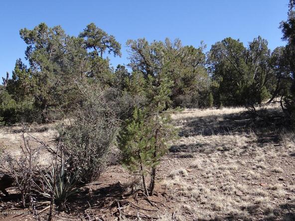 77 Shadow Rock Ranch, Seligman, AZ 86337 Photo 9