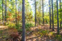 Home for sale: 0 County Rd., Waverly, AL 36879