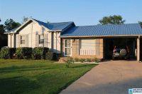 Home for sale: 111 Canyon Trl, Alexandria, AL 36250