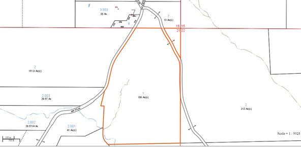 122 +/- Acres County Rd. 176, Five Points, AL 36855 Photo 17