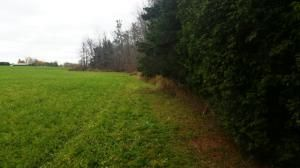 27.55 Acre State Hwy. 32, Sheboygan Falls, WI 53085 Photo 6