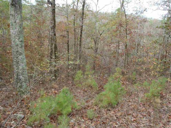 108 Buckthorn, Mountain Pine, AR 71956 Photo 2