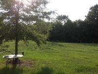 Home for sale: 5240 Madison Hwy., Greensboro, GA 30642