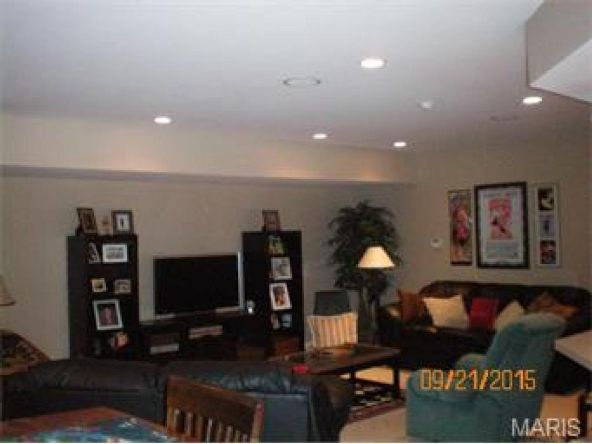13 Orchard Point, Hannibal, MO 63401 Photo 32