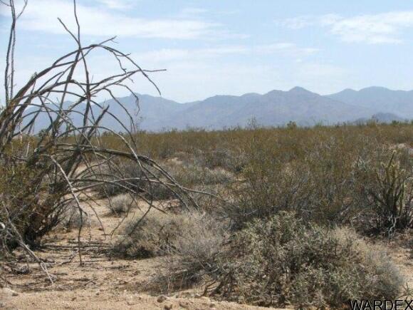 3054/58 Dateland Rd., Yucca, AZ 86438 Photo 5