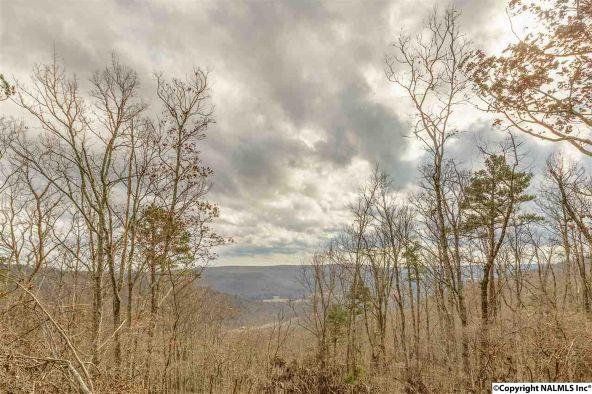3 South Bluff Trail, Huntsville, AL 35803 Photo 22