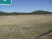Home for sale: 3460 E. Mountain Man Trail, Williams, AZ 86046