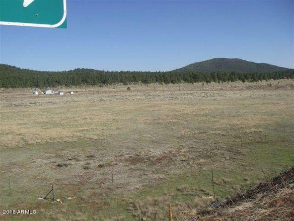 3460 E. Mountain Man Trail, Williams, AZ 86046 Photo 1