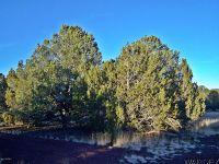 Home for sale: 1443 E. Galewood Dr., Williams, AZ 86046