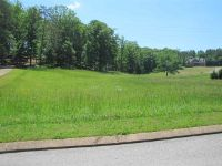 Home for sale: Lot 29 County Rd. 7004, Athens, TN 37303