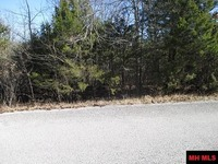 Home for sale: Lot 16 Chisum Dr., Mountain Home, AR 72653