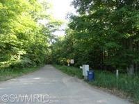Home for sale: 9576 S. Benjamin Dr., Newaygo, MI 49337