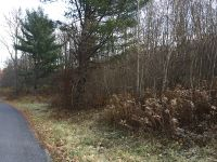 Home for sale: 100 Markle Hollow Rd., Big Flats, NY 14814