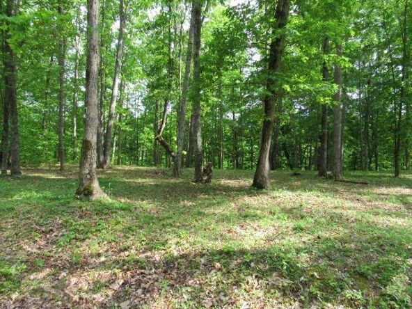 16-Lot The Woods At Wolf Creek, Jabez, KY 42544 Photo 8