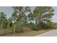 Home for sale: Egret Avenue, Weeki Wachee, FL 34613