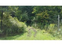Home for sale: 0 Whitmarsh Hollow Rd., Candor, NY 13743