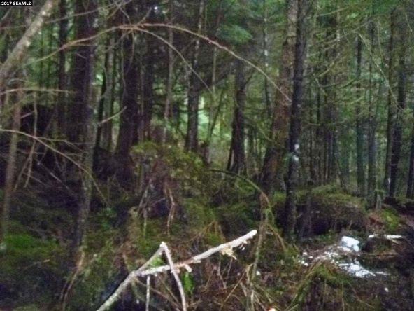 3165 Fritz Cove Rd., Juneau, AK 99801 Photo 2