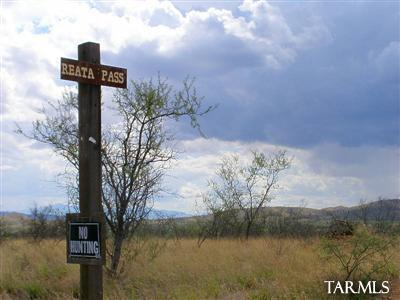 72 Ac Reata Pass (High Lonesome), Elfrida, AZ 85610 Photo 12