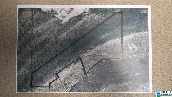 1551 Ridgeview Lake Rd., Alabaster, AL 35007 Photo 1