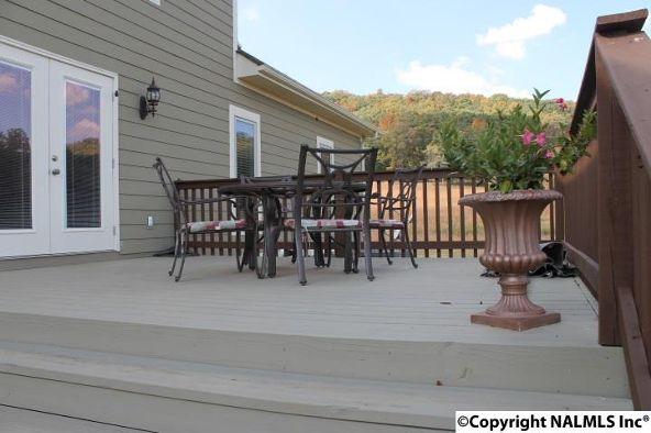 1234 County Rd. 622, Valley Head, AL 35989 Photo 46