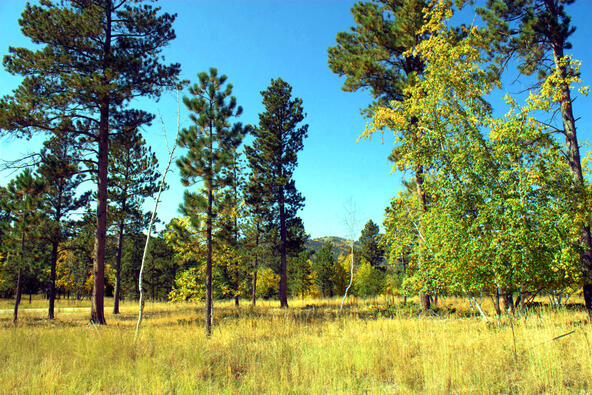 Lot 4, Powder House Trail, Lead, SD 57754 Photo 3