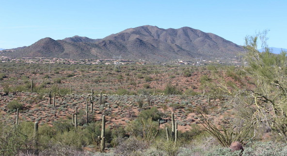 41000 N. 7th St., Phoenix, AZ 85086 Photo 7