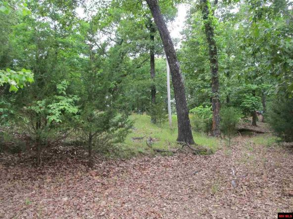 3053 Mc 8012, Yellville, AR 72687 Photo 3