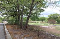 Home for sale: 559 Woodward Way N.W., Atlanta, GA 30305