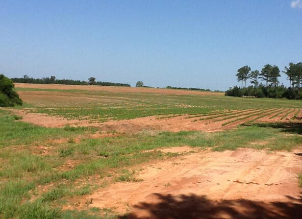 1 County Rd. 377, Opp, AL 36467 Photo 15