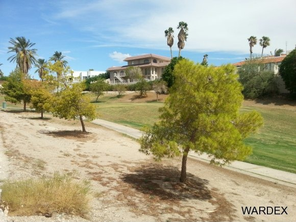 585 Player Ln., Lake Havasu City, AZ 86406 Photo 9