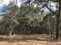 Home for sale: Tract 7 Cavallo Trail, Lloyd, FL 32337