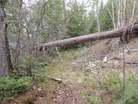 Home for sale: 38xx Arrowhead Trail, Hovland, MN 55606